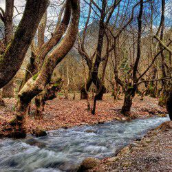 photo of aroanios river  spring  water, Kalavryta, travel & discover mysterious Greece