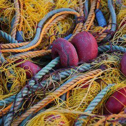 Fishing Nets © Jack Newton by Flickr