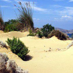 Pahies Ammoudies Dunes