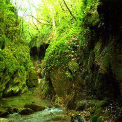photo of pantavrehi gorge, Karpenisi, travel & discover mysterious Greece