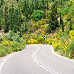 Rural Road © Shutterstock