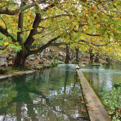 Scenery in Polidrosos Village
