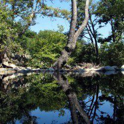 Fonias River