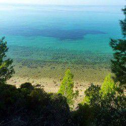 Elia Beach © Sithonia-rooms.gr
