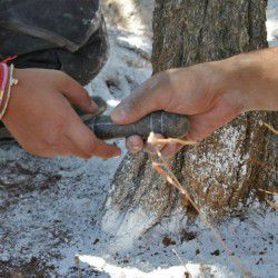 Ritual of Mastic Mystique - One of the most exciting parts of the Mastic Mystique Experience is when the kids try to make their own incisions on the bark of the Mastic Tree. This is almost a ritual for Masticulture. © Masticulture.com