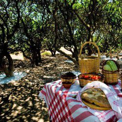 It's time for picnic - Masticulture always pays attention to details. Some of the products (all local) that their guests can taste in their picnics include freshly picked tomatoes and cucumbers, melons, traditional bread baked in a wood oven, almonds, cheese, kritamo (rock samphire) and olives. © Masticulture.com