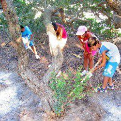 Children participating in the Mastic Mystique Experience © Masticulture.com