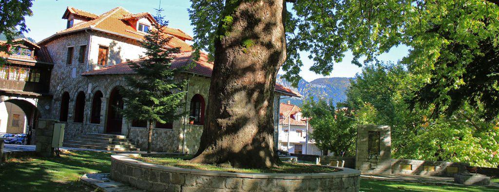AgiaParaskeviC