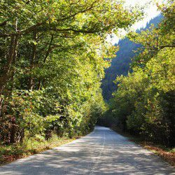 photo of autumn road, Escapist State of Mind, travel & discover mysterious Greece