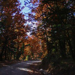 Dirt Road towards Doxa Lake © Mysteriousgreece