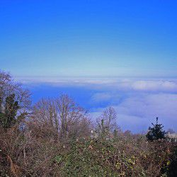 photo of foggyatmosphere in mouressi, One Million Words, travel & discover mysterious Greece