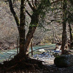 photo of karitsiotikos river, Travel Experiences, travel & discover mysterious Greece