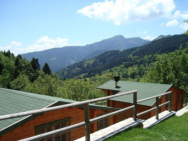 Wildlife's View to the Mountains