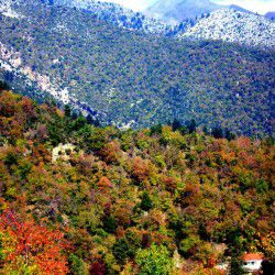 photo of anthiro, Escapist State of Mind, travel & discover mysterious Greece