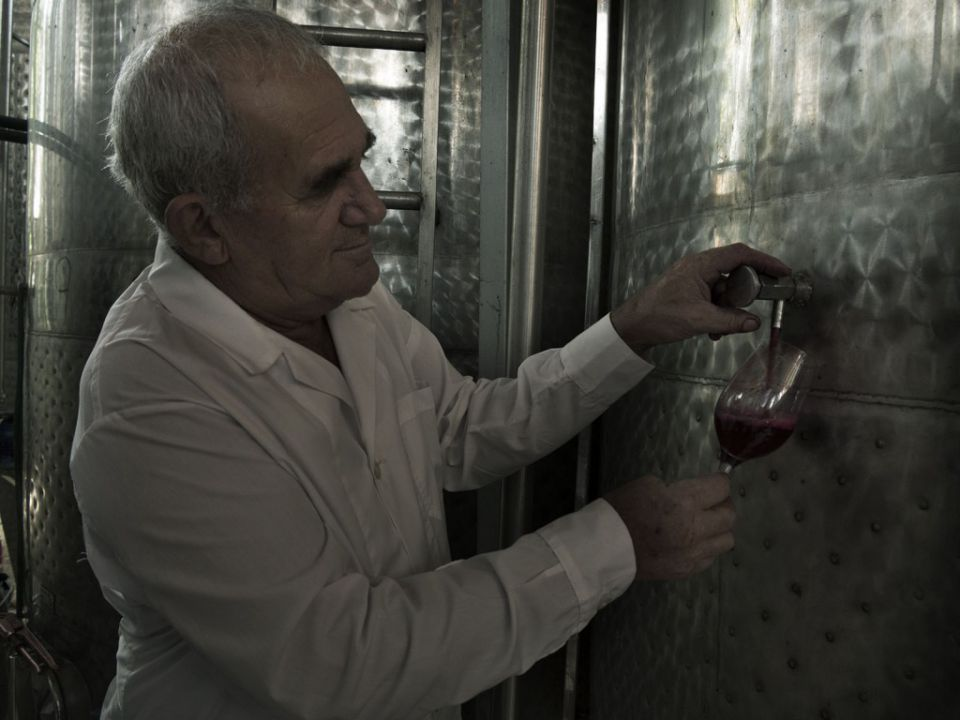 Karamitros' father on the project of winemaking