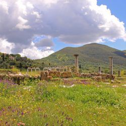 photo of messene  temple, Bucket List, travel & discover mysterious Greece