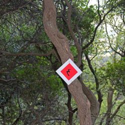 photo of signs for the menalon trail, One Million Words, travel & discover mysterious Greece